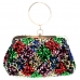 Multicolor Sequence Ring Handle Clutch Bag