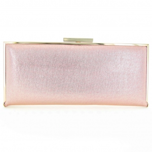 Metallic Rectangle Frame Clutch