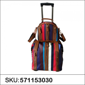 Trave Bag